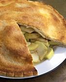 Apple pie, a piece cut, on plate