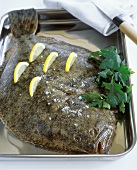 Raw turbot with salt, lemons and parsley in a roasting dish