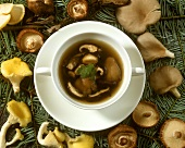 Mushroom soup in soup plates, with fresh mushrooms