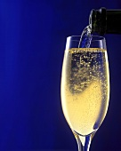 Pouring champagne into a glass against a dark blue backdrop