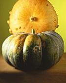 A green giant pumpkin in front of yellow pumpkin