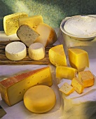 Still life with various types of cheese and cream cheese