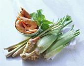 Still life with shrimps, fennel, lemon grass & ginger