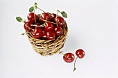 Morello cherries in basket