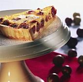 A piece of gooseberry tart