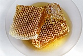 Honeycombs on a plate
