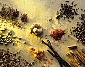 Various spices on light background