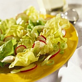Lettuce with mustard vinaigrette, radishes on a yellow plate