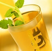 Elderflower lemonade in glass with mint and straw