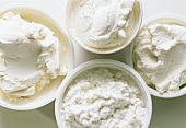 Various types of cream cheese and cottage cheese in bowls
