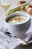 Vichyssoise (cold potato and leek soup) with mushrooms
