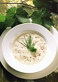 "Mainz ""Hand cheese"" soup with caraway and fresh herbs"
