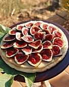 Fig tart on a plate in the open air