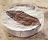 Feuille de Dreux, a French soft cheese