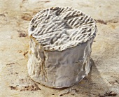Saint-Antoine, a French soft cheese, on light background