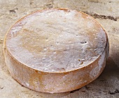 Tamie, a French semi-hard cheese, on brown background