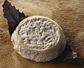 Capri Lezeen, a French goat's cheese