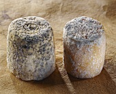 Chabichou du Poitou and Charolais, French goat's cheeses