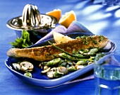 Stuffed brook trout with mushroom and spring onion salad