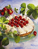 Strawberry meringue tart surrounded by strawberry leaves