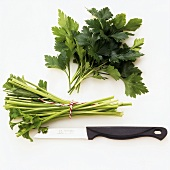 Cutting off parsley stalks