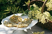 Elderflower fritters on white plate in open air