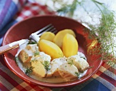 Poached fish in dill sauce with boiled potatoes & dill sprigs
