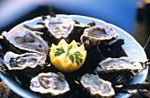 Austernplatte mit Zitrone