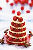 Small raspberry cake with star anise