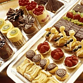 Various tartlets, pieces of cake and sweet pastries