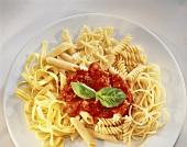 Gemischte Nudeln mit Tomatensauce und Basilikumblatt