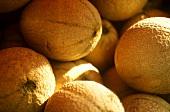Galia melons (close-up)