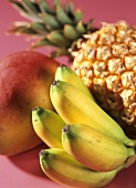 Exotic fruit still life (pineapple, mango, bananas)