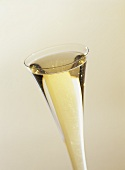 Sparkling wine in a champagne flute