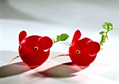 Two radish mice on light background