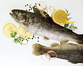Two trout with lemon, onion rings and herbs