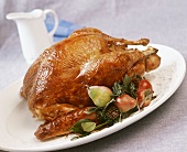 Roast turkey with fruit and pine sprigs on a platter