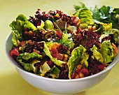 Mixed salad leaves with vegetables and fresh herbs