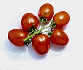 Plum tomatoes on a white background