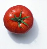 Tomato from Above