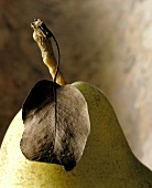 Yellow pear with stalk and leaf (detail)