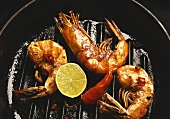 Jumbo prawns with chili pepper and lime in grill pan