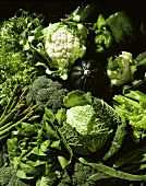 Various types of green vegetables (cabbage, lettuce etc)