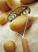 Potatoes with potato masher