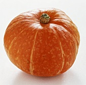 Giant orange pumpkin on a white background