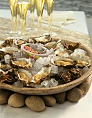 Fresh oysters on ice in an earthenware bowl