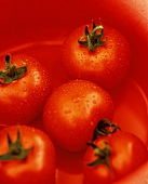 Tomatoes with drops of water in a red bowl