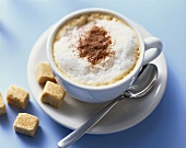 A cup of cappuccino with cocoa powder and raw sugar cubes