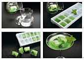 Making mint ice cubes