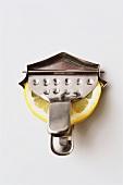 Slice of lemon in lemon squeezer